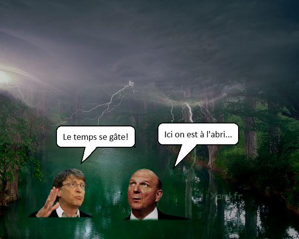 Bill Gates et Steve Ballmer gribouilles dans une mare sous un ciel orageux
